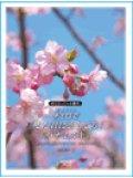 チェロソロ楽譜 チェロで/「また君に恋してる」「ハナミズキ」 CD・パート譜付【2021年1月取扱開始】